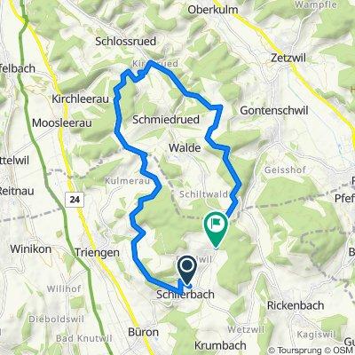 Oberdorf 10, Schlierbach nach Sonnmatt, Schlierbach