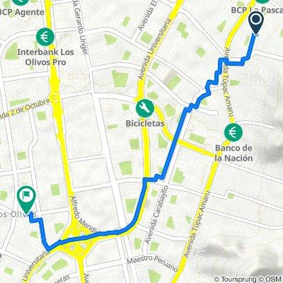 De Avenida María Parado De Bellido 110, Comas a Avenida Central 699, Los Olivos