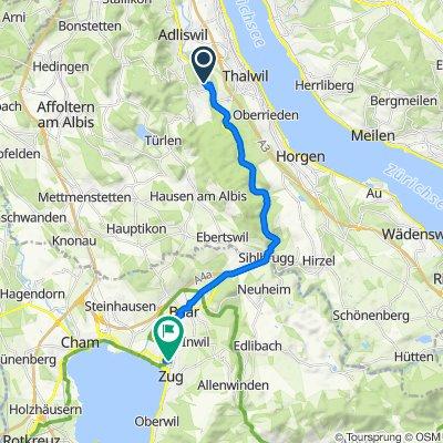 Höflistrasse 21–23, Langnau am Albis nach Gubelstrasse 19, Zug