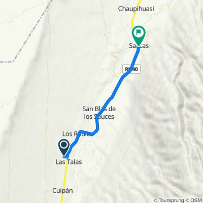 De Ruta Nacional 40 a Salicas