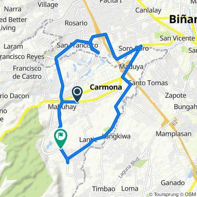Route from Dasmarinas-Carmona Road, Carmona