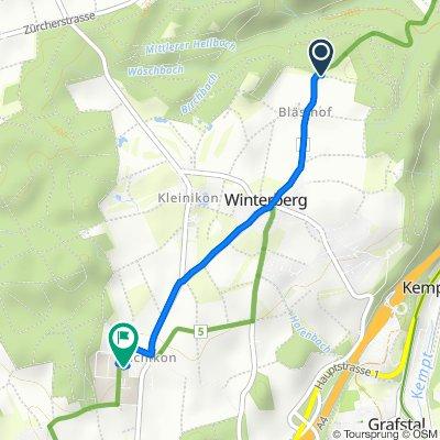 Bläsihofstrasse, Winterberg ZH nach Eschikon 27, Lindau