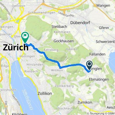 Im Gassacher 6, Binz nach Hochstrasse 40, Zürich