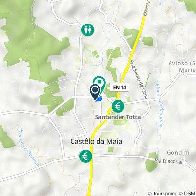 Avenida do Sport Clube Castelo de Maia 215, Maia to Avenida Carlos Oliveira Campos 250, Avioso-Santa Maria