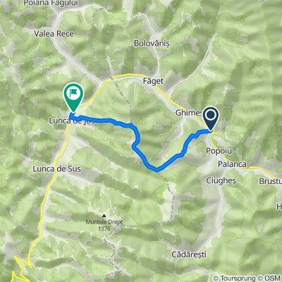 GHIMES-Cetatea RAKOCZI-VF. POPOIU 1271 m-VF. PADUREA NEAGRA 1441 m-Culmea MARE-Valea CAPELEI-LUNCA DE JOS