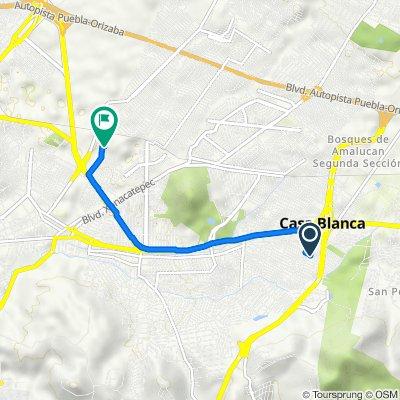 De Avenida De Las Torres 194, Casa Blanca a Calle Antiguo Camino A Manzanilla 982, Heróica Puebla De Zaragoza