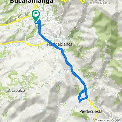 De Carrera 24 101-31, Bucaramanga a Carrera 24 101-32, Bucaramanga