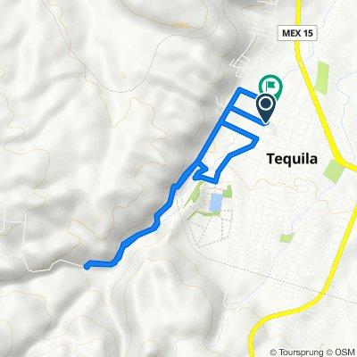 De Calle Romon Corona 34, Tequila a Calle Ramón Corona 90–108, Tequila