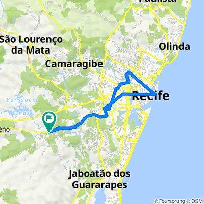 De Rua José Basílio da Cunha 52 a Rua José Basílio da Cunha 52
