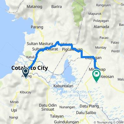 Tenorio Road to Midsayap
