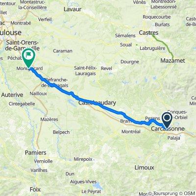 14_Carcassonne-Montgiscard