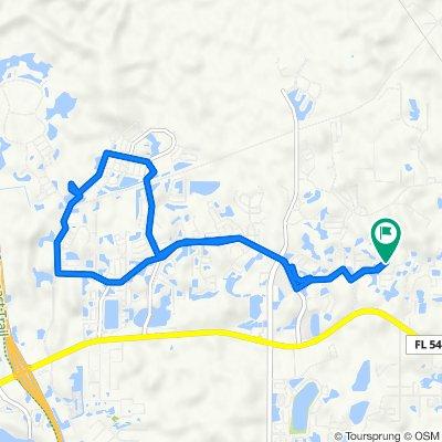 3229 Stoneman Loop, Land O Lakes to 3229 Stoneman Loop, Land O Lakes