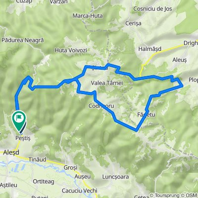 Padurea Neagra route shorter