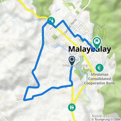 Lope Damasco Street, Malaybalay to Malaybalay
