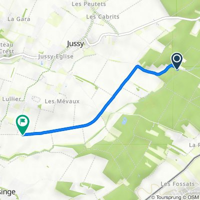 De Chemin des Grands-Bois, Jussy à Chemin des Embrouchis, Jussy