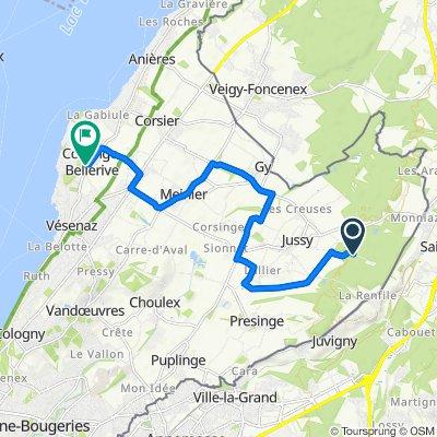 De Chemin des Grands-Bois, Jussy à Route d'Hermance 101, Collonge-Bellerive