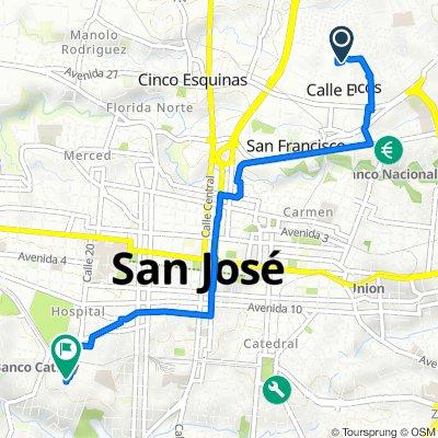 De Calle 27 33, Calle Blancos a Calle 20, San José