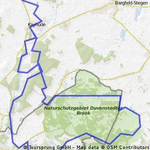 CTF Teilstück Duvenstedter Brook/Wohldorfer Wald, RSC Kattenberg, Start/Ziel in Naherfurt Einmündung Segeberger Str./Fahrenhorster Weg