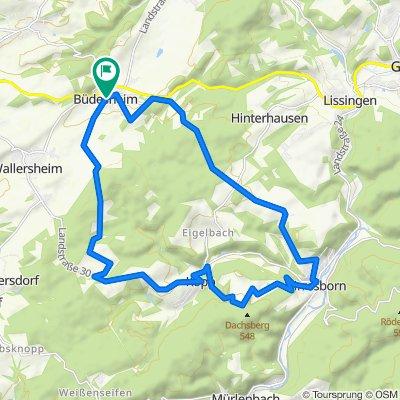 Büdesheim - Eishöhle - Büdesheim_22 km