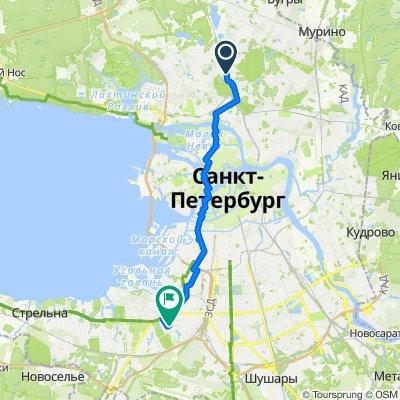 От Удельный проспект 19, Санкт-Петербург до улица Лёни Голикова 42, Санкт-Петербург