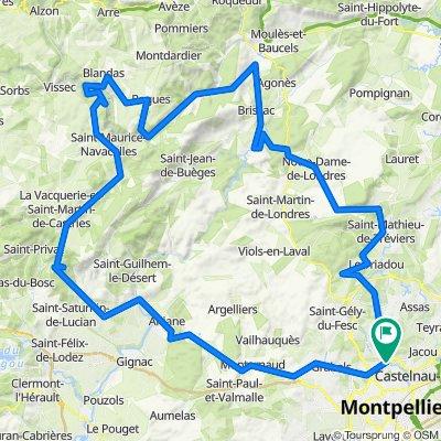 Montpellier-Blandas