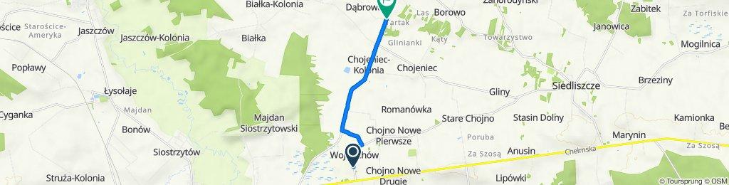 Wojciechów 3, Wojciechów do Wola Korybutowa Kolonia 55, Siedliszcze