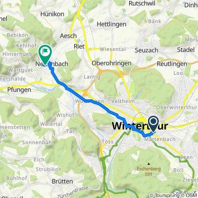 Grüzenstrasse 44, Winterthur nach Mühleweg 8, Neftenbach