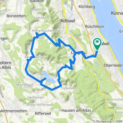 Thalwil - Albispass - Türlersee - Buchenegg - Thalwil
