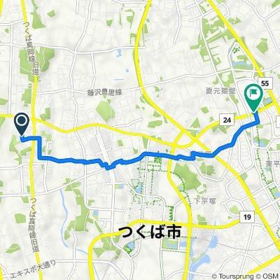 筑波大学まで