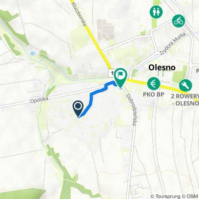 Jana Kilińskiego 35, Olesno do Opolska 6, Olesno