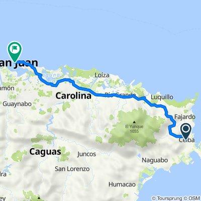 Ceiba to San Juan