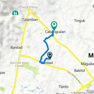 Saint Therese Drive 8, Mandaue City to M. L. Quezon Avenue 778, Mandaue City