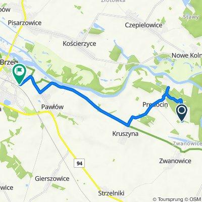 Trasa do Nysańska 19, Brzeg