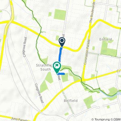 A22 476, Strathfield South to Water Street 39, Belfield