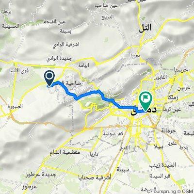Route to Souq Madhat - Basha Street - Via Recta, Damascus