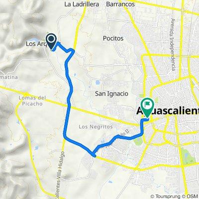 De Carretera El Cereso-Jesús María, Jesús María a Calle Guanajuato 301, Aguascalientes