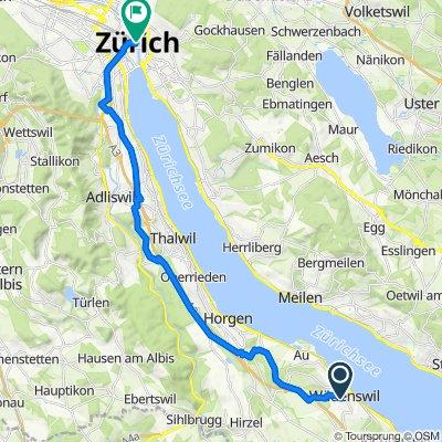 Fuhrstrasse 16, Wädenswil nach Zürich