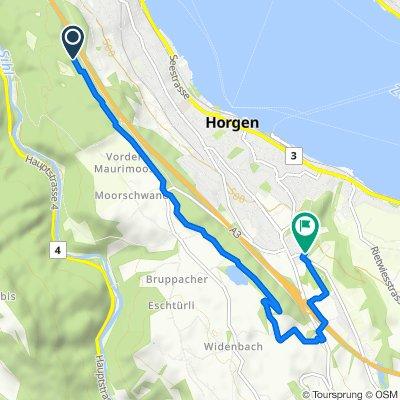 Zürcherstrasse, Oberrieden nach Bachtelstrasse 4, Horgen
