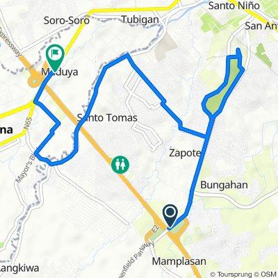 Route from New Binan Road, Biñan City