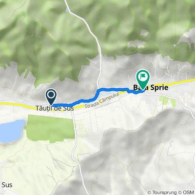 Route to Strada Gutinului 7, Baia Sprie