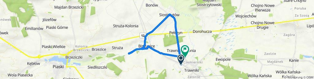 Trawniki-Kolonia 173B, Trawniki do Trawniki-Kolonia 546, Trawniki
