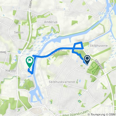 Kranvejen 75, Odense C to Lumbyvej 17D, Odense C