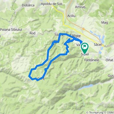 Traseu MTB Sibiel - Săliște - Crinț - Tilișca