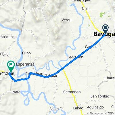 Agusan del Sur, Bayugan City to Unnamed Road, Las Nieves