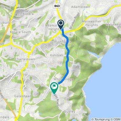 Adamstown Heights to Whitebridge Newcastle Bike Trail (Perfect for E-bike)