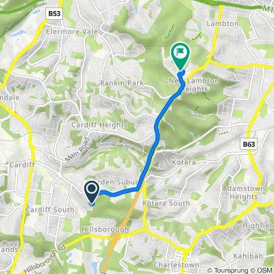 Cardiff to New Lambton Heights Newcastle Bike Trail (Perfect for E-bike)