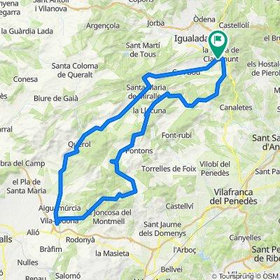 Anoia-Baix Camp-Penedès loop amb Berta
