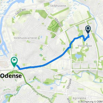 Birkeparken 230, Odense NØ to Dannebrogsgade, Odense C