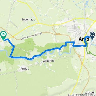 Arad - Pecica