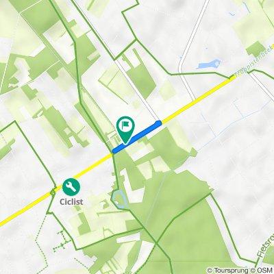 N12 377, Schilde naar Turnhoutsebaan 377, Schilde